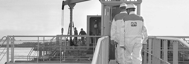 Ingenieros de PPG en terreno